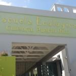 La escuela ecológica